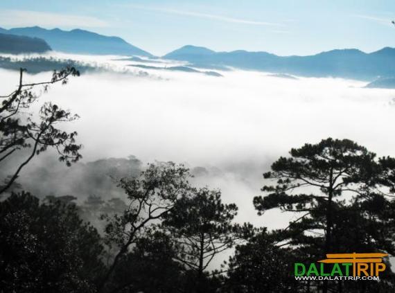 Vườn Quốc Gia Bidoup - Núi Bà