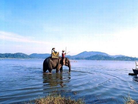 Cưỡi voi đi dạo ở hồ Lắk là trò chơi được rất nhiều du khách ưa thích