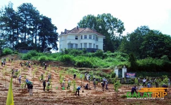 lễ trồng cây xanh