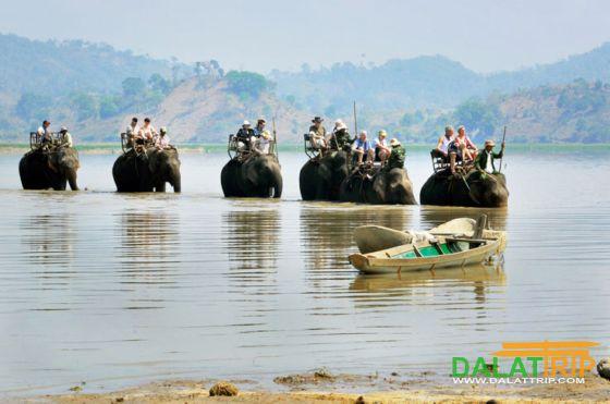 Cưỡi voi qua sông Se-rê-pok