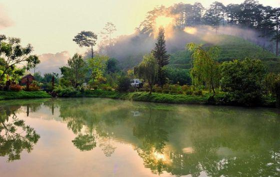 Bình minh ở Ma Rừng Lữ Quán
