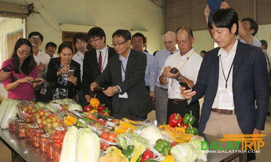 Du lịch canh nông ở Đà Lạt Lâm Đồng – những vấn đề đặt ra