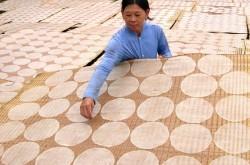Tham quan làng bánh tráng Lạc Lâm ở Lâm Đồng