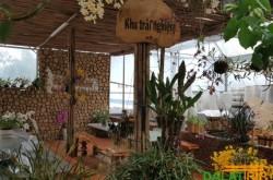 khu trải nghiệm vườn lan