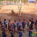 Lễ hội mừng lúa mới của người K'Ho