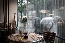 Phố núi Đà Lạt một chiều mưa