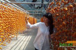 Thú vị du lịch tham quan nông sản đặc sản Đà Lạt