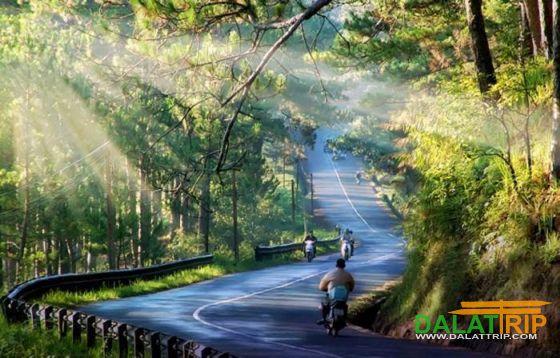 Tận hưởng mùa hè trên Đà lạt