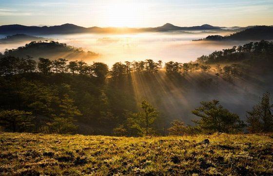 Nắng sớm Đà Lạt