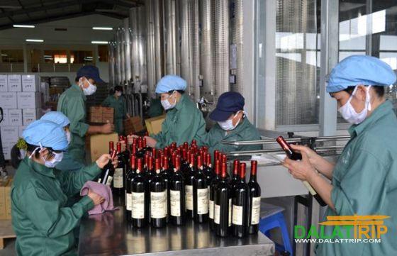 quy trình đóng chai rượu vang