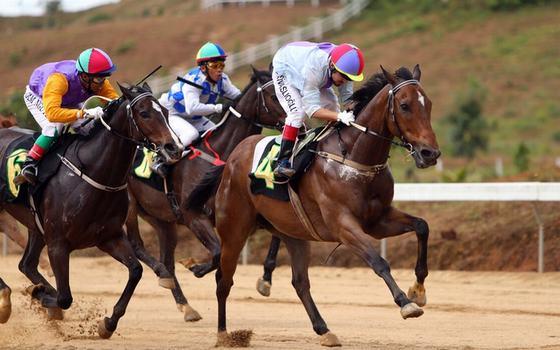 Vó ngựa trường đua Thiên Mã