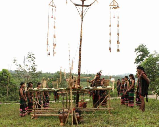 Lễ cúng lúa mới của người K'Ho Srê