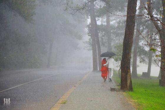 Bờ hồ Xuân Hương trong mưa