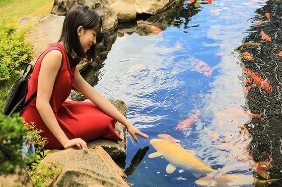 Suối cá khu du lịch Lá Phong