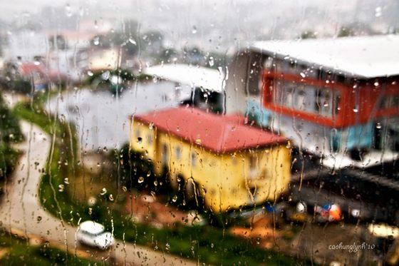 ngắm mưa trong quán cà phê