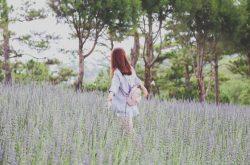 Phố núi Đà Lạt – bản flow ngọt lành mang lại sự yên tĩnh cho tâm hồn