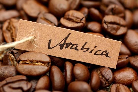 Cà phê Arabica Đà Lạt