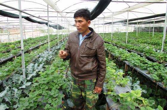 được hướng dẫn tham quan Vietfarm