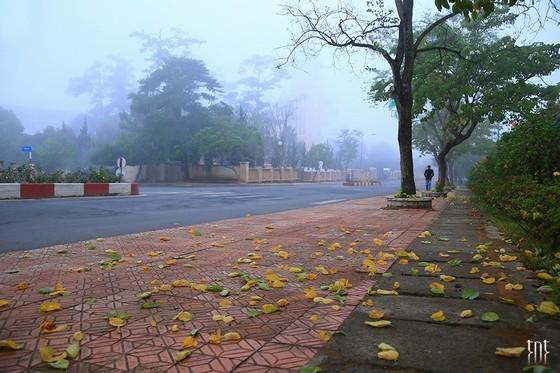 một mùa thu dịu êm ở Đà Lạt
