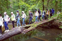 Trải nghiệm du lịch học tập tại Vườn Quốc gia Bidoup – Núi Bà
