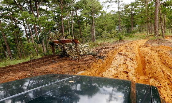 Đường vào hồ đá rất xấu, xe máy không thể vào vì bùn lầy chiếm 2/3 quãng đường. Một công ty lâm nghiệp đã căng rào chắn không cho ô tô làm dịch vụ chở khách chạy vào vì đã đè chết nhiều cây thông con của công ty này