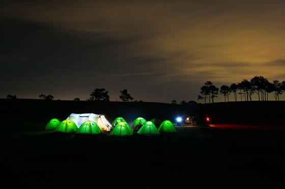 đêm trại lung linh giữa thảo nguyên cỏ hồng