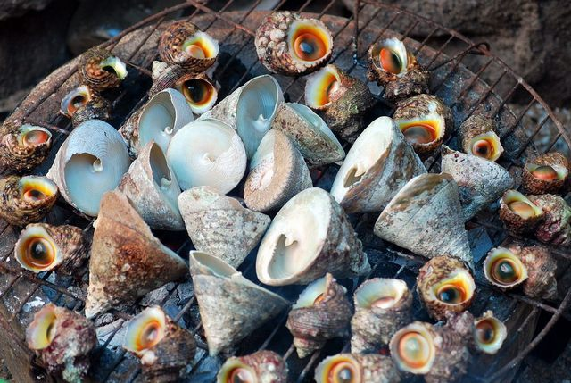 Grilled sea snail