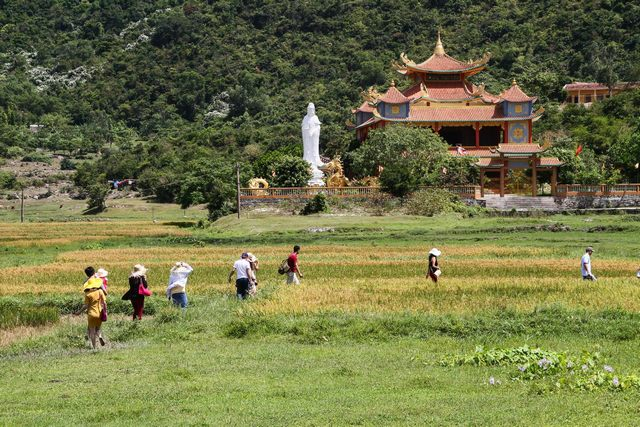 Hai Tang pagoda of Cham island