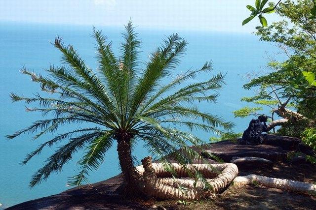 Hon Son island view
