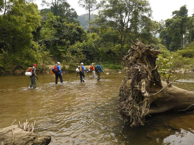 Tourists have to had good health to walk deep in the tropical rainforest
