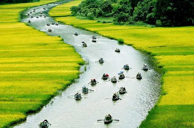 the way to Trang An 4