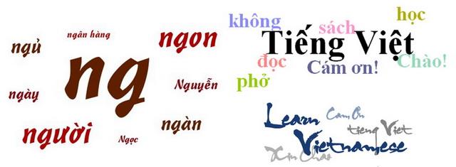 Characteristics of Vietnamese