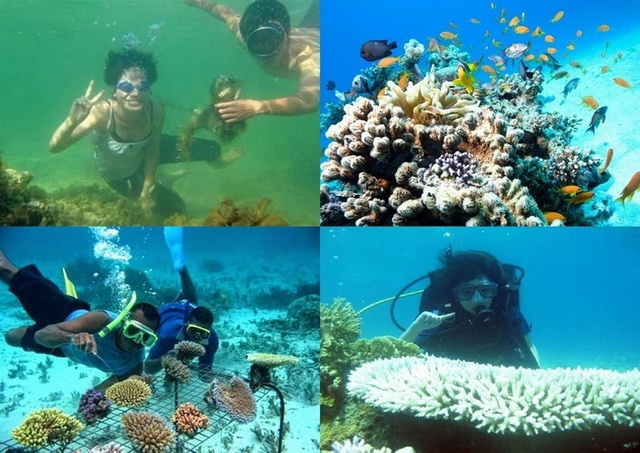 Tourists diving at Ghenh Bang