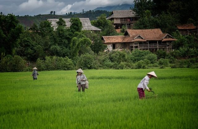 Vietnam showed up simplicity and peace