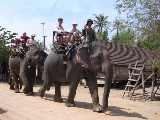 Elephant riding at Jun village