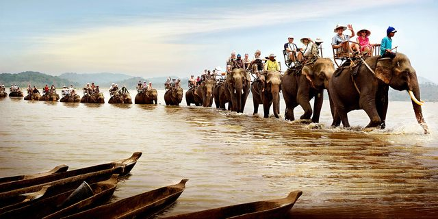 Elephant riding trip through serepok river