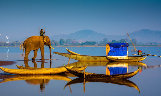 Elephants and Lake lake in the afternoon