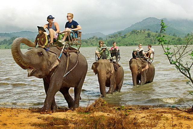 Riding elephant pass Lak lake