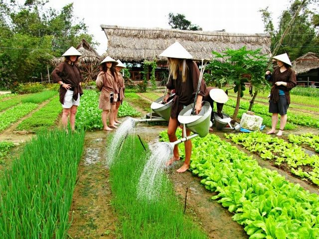 Watering vegetables - Photo by Caitlyn - Hendrik