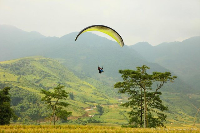 paragliding in Mu Cang Chai