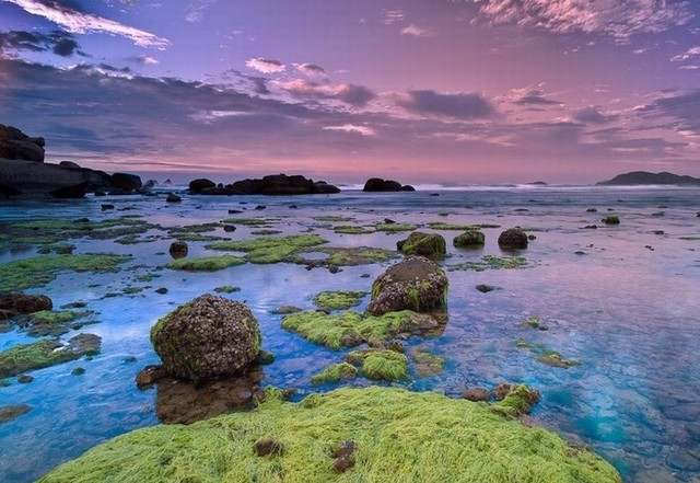 The stones covered moss under the clear water gradually appear