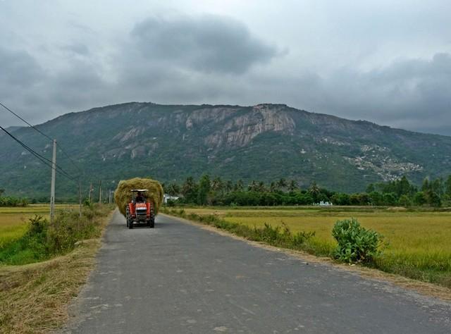 La route de la plage Binh Tien