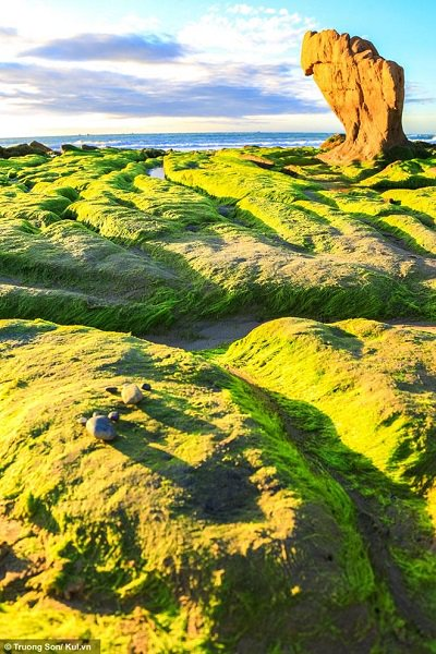 Une photo de la plage Co Thach