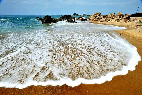 """Binh Thuan is dubbed """"the cradle of snails"""""""
