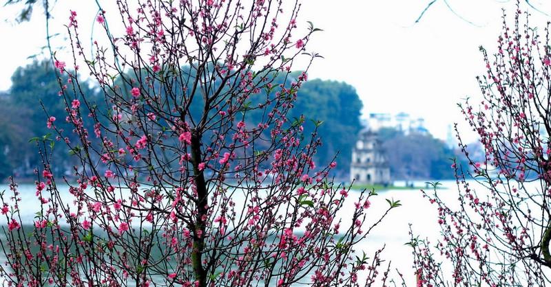 Ханой весной