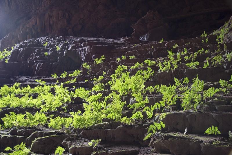 ภายในถ้ำแคระ