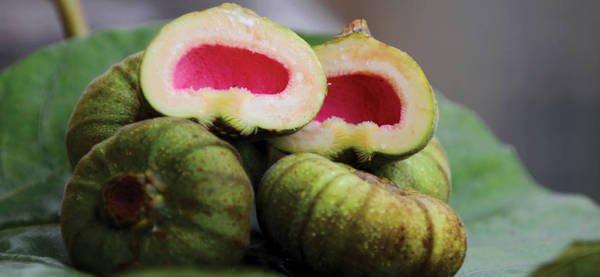 Hue figs
