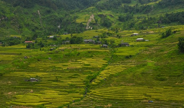 "At the end of September every year, the event ""Through the heritage area of Hoang Su Phi rice terraces"", held in Vinh Quang town, Hoang Su Phi district with many activities associated with cultural identity to advertise and promote the tourism potential of the locality."