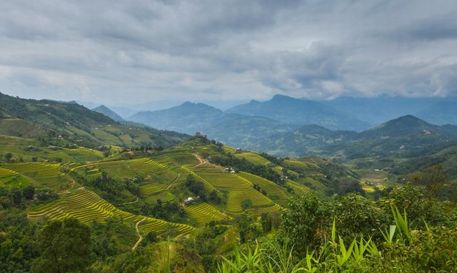 Hoang Su Phi is a highland border district of Ha Giang province with terraced rice fields in the most beautiful kind of Vietnam.