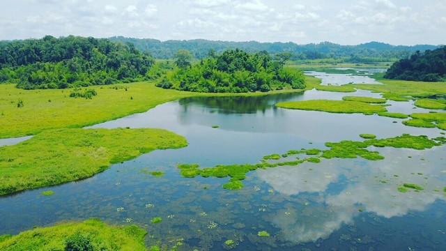 Experiences for visiting Cat Tien National Park in Dong Nai
